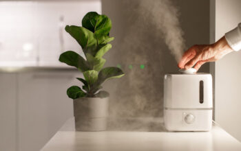 An Air Humidifier To Ease The Room